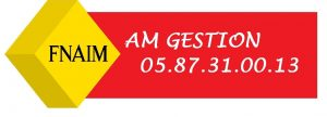 AmGestionNVEAU logo ok